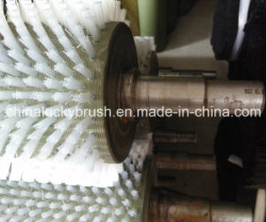 Nylon or PP Fruit Cleaning or Polishing Roller Brush (YY-090) pictures & photos