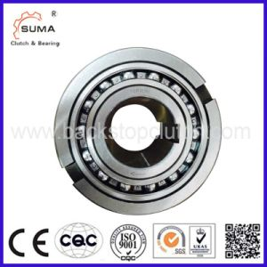Single Way Freewheel Roller Clutch Bearing Nfr100 (16028) pictures & photos