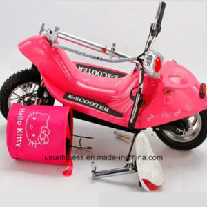 Expert Manufacturer of Electric Bike pictures & photos