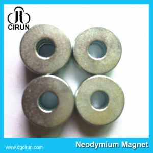 Super Strong High Quality Customized Neodymium Ring Magnet pictures & photos