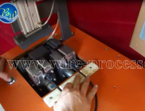 Semi-Automatic Double Nuts Tightening Machine for Connector with Cabinet Style pictures & photos