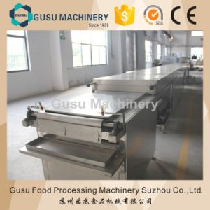 SGS Certified Snack Food Chocolate Machine Drops Depositing Equipment pictures & photos