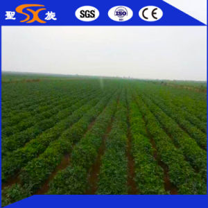2016 New Style Semi-Automatic Peanut Planter/Seeder with Ce, SGS pictures & photos