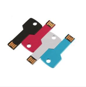 Free Logo Printed Custom USB Key with Ce/FCC/RoHS pictures & photos