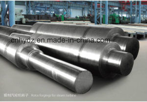 Round Straight Forging Stepped Shaft pictures & photos