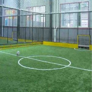 Football Artificial Grass for Soccer Field pictures & photos