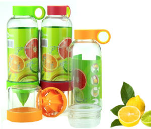 Wholesale 2015 Custom Blender Shaker Fruit Juice Bottle / Tea Water Bottle Infuser Fashion pictures & photos