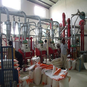 Maize Flour Milling Machine Price, Flour Production Plant pictures & photos