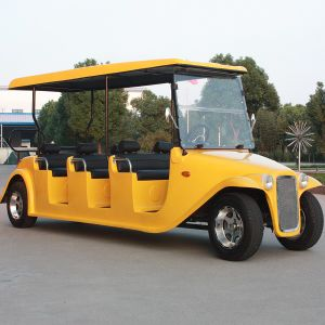8 Seats Electric Classic Passenger Sightseeing Golf Car (DN-8D) pictures & photos