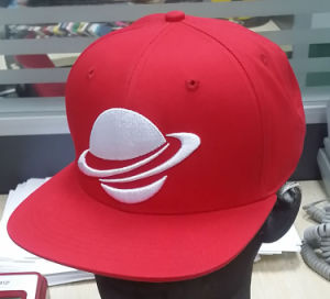 Custom Fashion Embroidered Snapback Cap Hat for Men pictures & photos