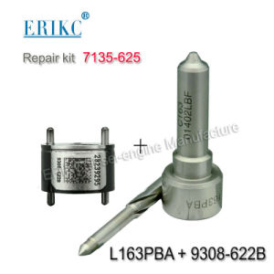 Erikc 7135-625 (7135 625) Fuel Overhaul Kit 7135625 with Injector Valve 9308-622b Diesel Fuel Pump Nozzle L163pbd for Injector Ejbr03301d pictures & photos