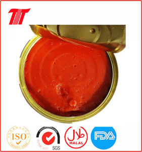 Tomato Puree-Double Concentration pictures & photos