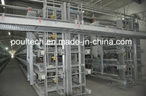 Hot Sale Layer Chicken Cage Equipment pictures & photos