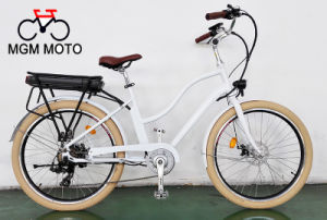 Hot Sale Classical Model Cheap Fat Electric Bicycle pictures & photos