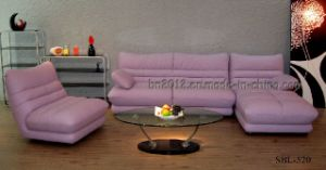 Living Room Genuine Leather Sofa (SBL-520) pictures & photos