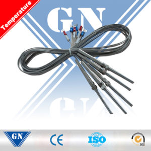 Armored Thermocouple with Compensation Wire (CX-WR) pictures & photos