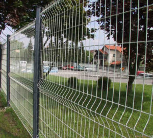 Galvanized and Powder Coated Welded Wire Fence pictures & photos