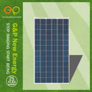 G&P Poly Solar Panel 255-310W, China Manufacturer pictures & photos