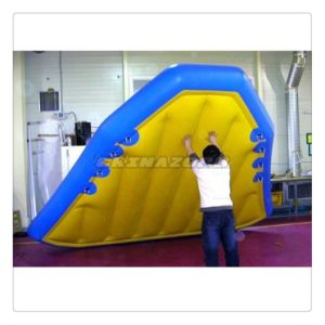 Quite Good Designed Blue Flying Rides Inflatable Water Flyfish pictures & photos