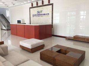 Korea Market 75mm Solid Webbing (2.4T) pictures & photos
