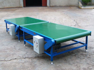 Quality Belt Conveyor for Carton pictures & photos