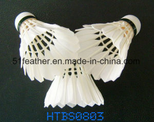 White Water Duck Feather Shuttlecock with 2 Layers Cork Wood Head for Training and Sports pictures & photos