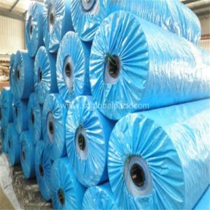 Top Quality Truck Cover Blue PE Tarpaulin in Roll pictures & photos