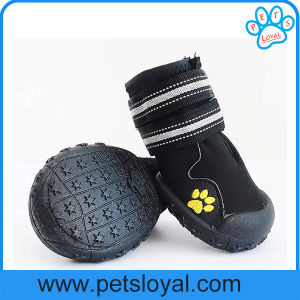 Anti-Slip Waterproof Sole Medium Large Pet Dog Shoes pictures & photos