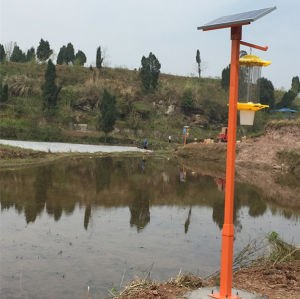 Help Crop Yields High Quality Solar Pest Control Lamp pictures & photos