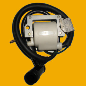 OEM High Quality Motorcycle Ignition Coil for Motorcycle pictures & photos