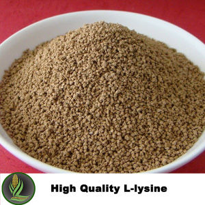 Good Quality L-Lysine HCl for Animal Feed