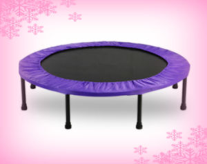 2017 New Style Customized Trampoline, Indoor Trampoline, Portable Trampoline pictures & photos