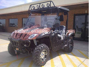 BMS Ranch Pony 600 Efi UTV pictures & photos