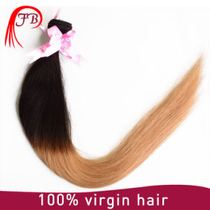 Two Tone Colors Ombre Straight Brazilian Human Hair pictures & photos