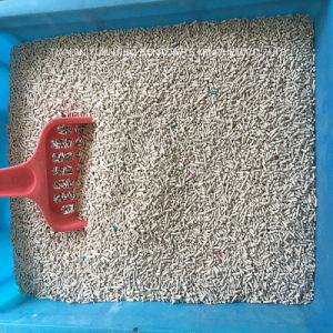 Best Quality of Strip Cat Litter Manufactory pictures & photos