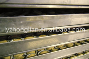 Fd-5 Vegetables and Fruits Food Freeze Lyophilizer Dryer Machine pictures & photos