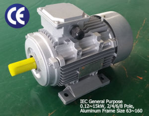 8/4 Pole~3kw/4.5kw~Alu Housing~ Two Speed Motor pictures & photos