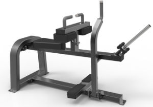 CE and RoHS Approved Gym Bench Type Ld-9062 Seated Carf Commercial Gym /Fitness Equipment