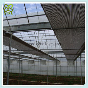 Tropical Solar Hydroponic Film Green House pictures & photos