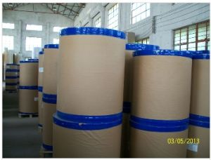 Kaolinite Coated Thermal Paper in Jumbo Roll pictures & photos