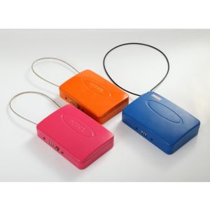 Safe Colorful 8 Inches Portable Box (C100-200) pictures & photos
