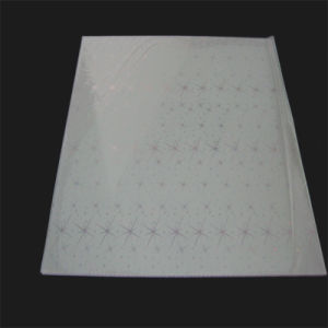 China High Quality Bendable PVC Panel