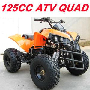 125cc ATV Quad pictures & photos