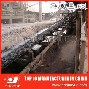 Special Conveyor Belt for High Temperature pictures & photos