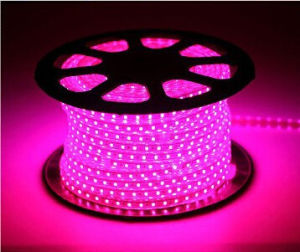 Ce EMC LVD RoHS Two Years Warranty Pink Rope Light LED Strip (HVSMD-3528-60) pictures & photos
