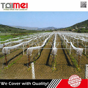 HDPE Orchard Apple Tree Anti Hail Netting pictures & photos
