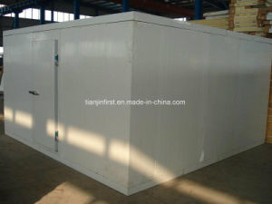 Hot New Professional Cold Storage/Cold Room pictures & photos