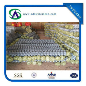 50mm*50mm 6ft*18m Galvanized/PVC Chain Link Fence pictures & photos