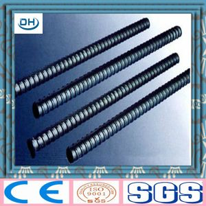 Hot Rolled Steel Rebar for Building Construction pictures & photos