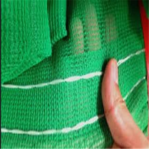 Scaffold Building Green Construction Safety Net for Export pictures & photos